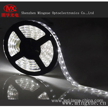 Waterproof LED Strip SMD5050 LED Strip Light